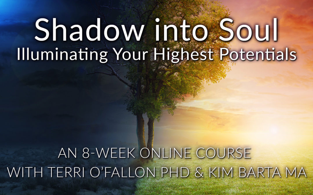 Shadow into Soul: Illuminating Your Highest Potentials